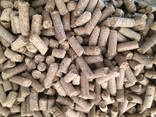 Brewers grains, dried (dry residues of brewing manufacture) - photo 1