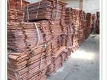 Copper cathode 99.97% - photo 1