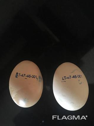 Ei Inkubation ROSS-308, vom Hersteller