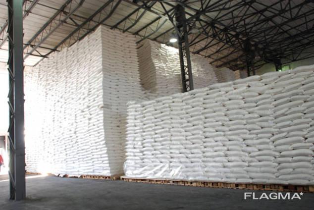 Export of White Cane Sugar
