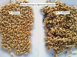 Grain Cleaning Aerodynamic Separator - photo 5