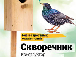 Solid wood pine birdhouse, bird feeder