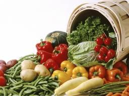 Сушеные овощи и зелень от производителя !