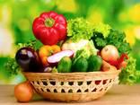 Сушеные овощи и зелень от производителя ! - photo 5