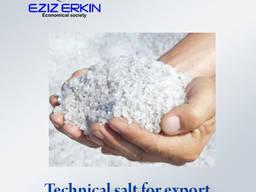 Тechnical salt