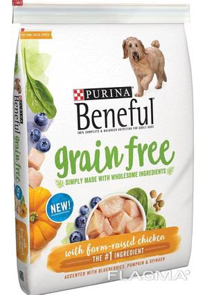 Top grade dog food canned dry available in all quantities well packaged